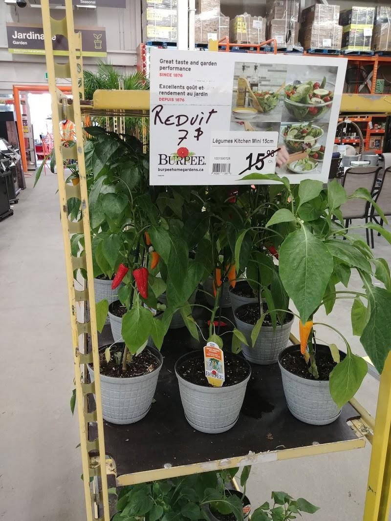 Ammeublement The Home Depot à Greenfield Park (QC) | theDir