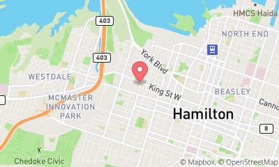 map, Veterinary Hamilton Regional Emergency Veterinary Clinic in Hamilton (ON) | theDir